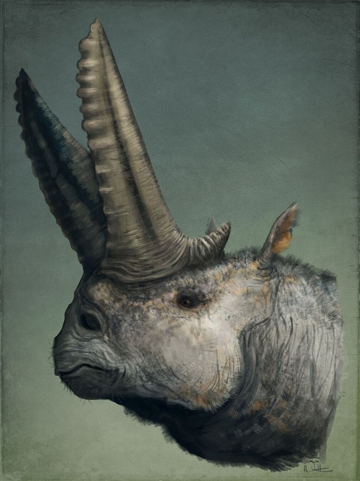 Portrait of an Arsinoitherium by Mark P. Witton