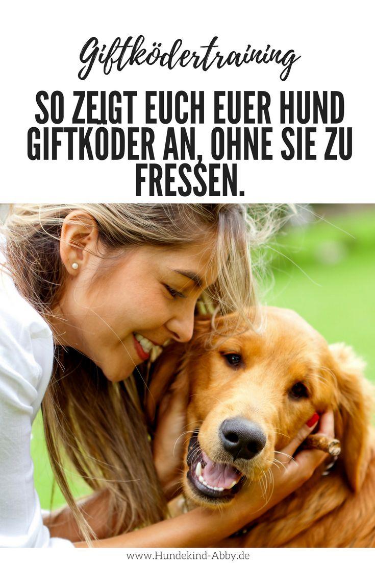 #Hund #Hundeblogger #Hundeliebe #Wissen #Giftköder Hunde    Erziehung    DIY    Wissen    Gesundheit
