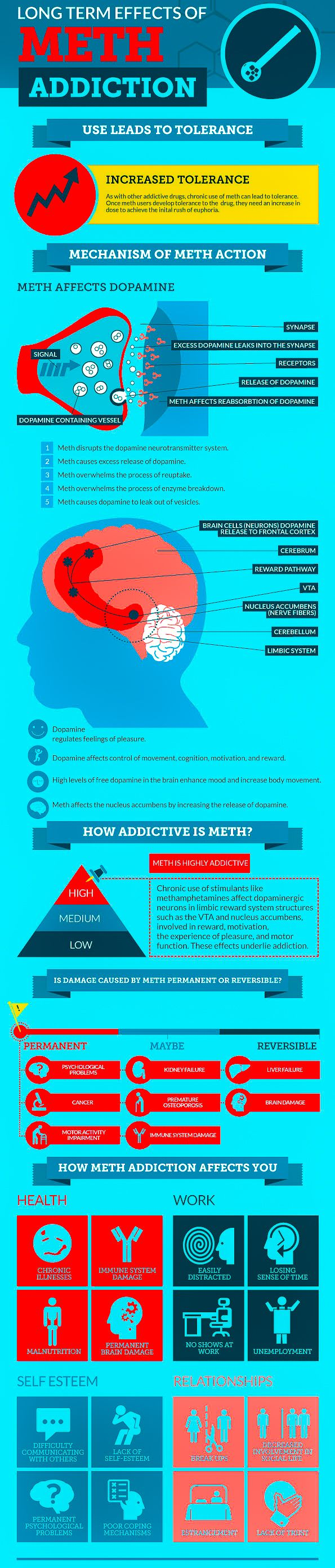 The basic workings of methamphetamine's psychoactive action in the central nervous system are outlined in this #infographic. #addictiontreatment