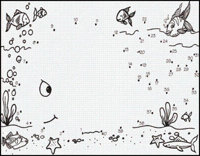 Jona verbind de cijfers Walvis // Jonah connect the dots Whale