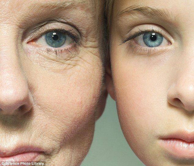 Aby zahamować procesy starzenia, bardzo ważne jest aby wprowadzić odpowiednie zmiany w stylu życia.  Duży wpływ na opóźnienie procesów starzenia mają zielone warzywa, dlatego jedźmy ich jak najwięcej. Koniecznie pijcie duże ilości wody, nawet 2-3 litry dziennie - dlaczego ? A to dlatego, że w 75 % nasze ciało składa się z wody, która jest konieczna do prawidłowego funkcjonowania organizmu. Pamiętajcie również o spożywaniu większej ilości mięsa z łososia i z piersi indyka.  Teraz przejdziemy…