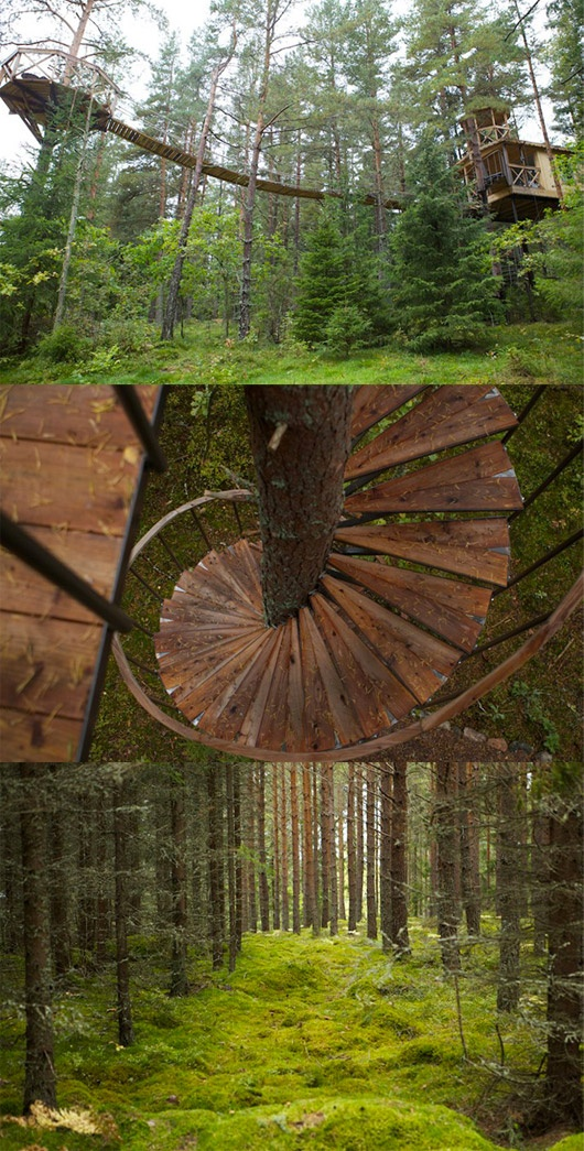 Tree house: Spirals Staircases, Trees Trunks, Wrought Irons Staircases, Spirals Stairs, House Trees, Woods Stairs, Dreams House, Treehouse, Trees House