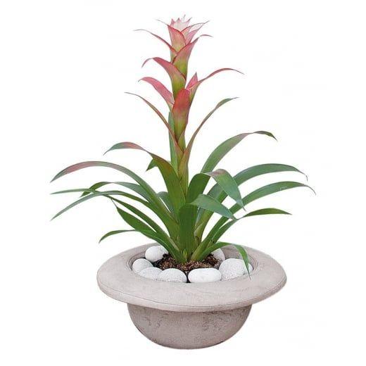 Seletti Bowler Hat Cement Plant Pot / Vase - Chapeau Bombetta