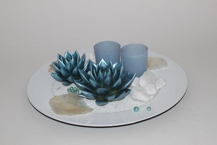Echeveria Miranda coloured metallic blue