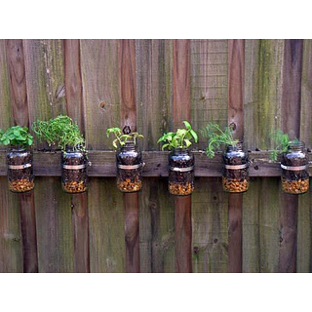 58 Best Images About Mason Jar Planters On Pinterest