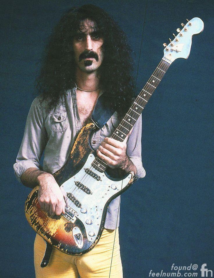 Frank Zappa Jimi Hendrix Guitar