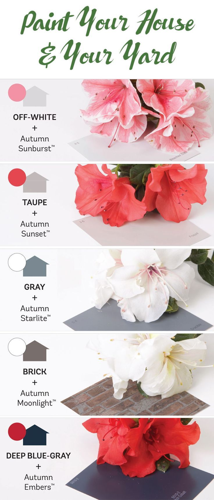 Top 5 Home Colors And Encores That Look Great With Them House Colors Azalea Color Garden Inspiration