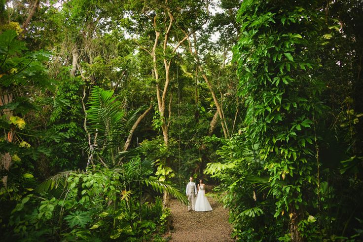 The Botanica Rainforest