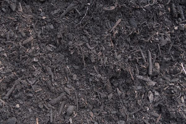how to add organic matter to lawn