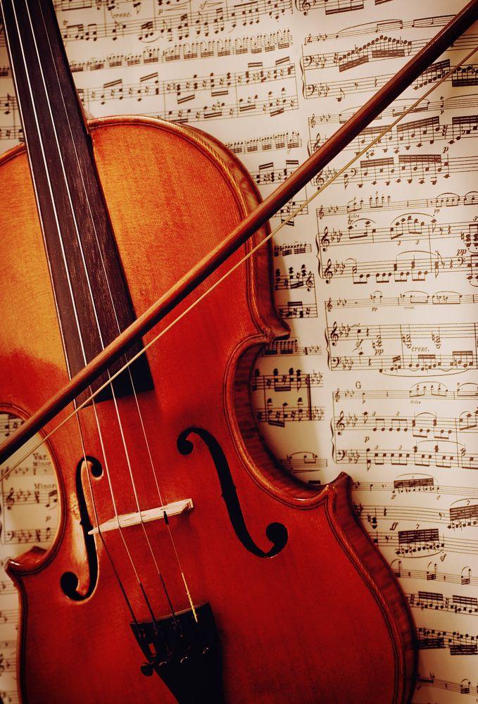 Geige http://fc-foto.de/36412025