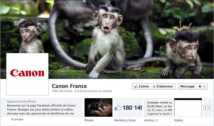 Canon et sa Stratégie Social Media
