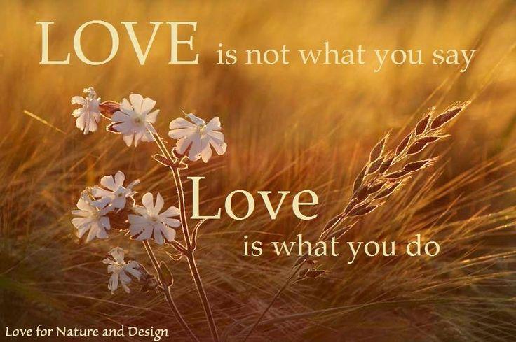 恋は好きだと言いたくなるもの 愛は好きだと言えなくなるもの