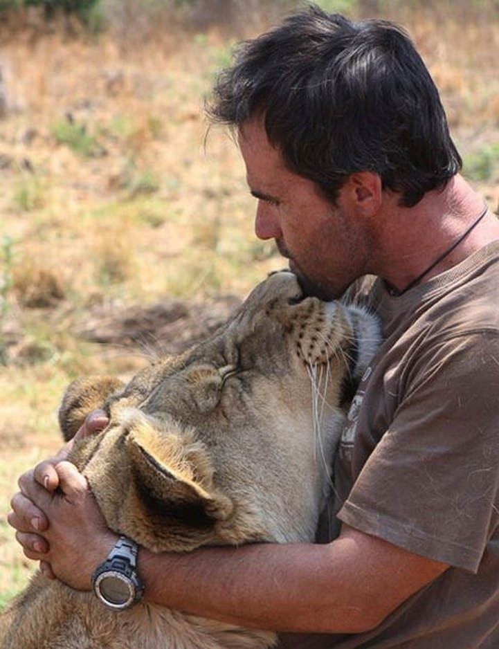 THe LioN WHiSPeReR KeViN RiCHaRDSoN With His LioN iN SouTH aFRiCa