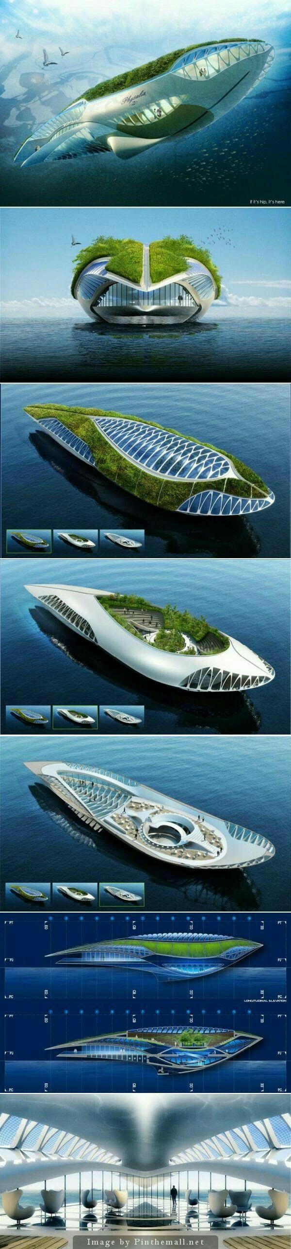 An Amphibious Floating Garden That Purifies The Water, The Physalia.
