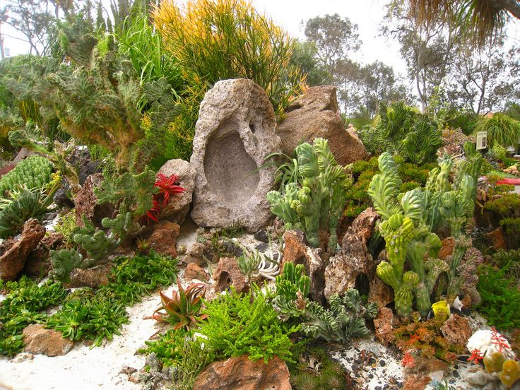 Popular Underwater Succulent Garden by Weekend del Sol