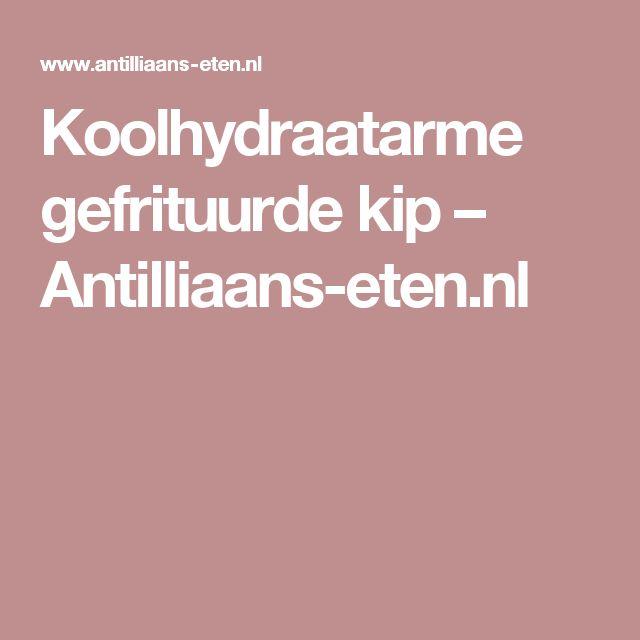 Koolhydraatarme gefrituurde kip – Antilliaans-eten.nl