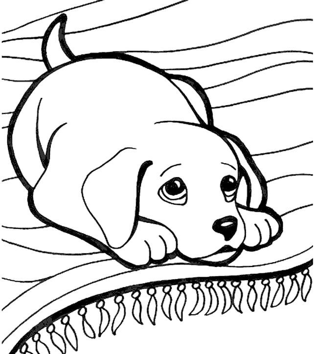 Kopek Boyama Sayfasi Dog Coloring Pages Free Printable Puppy Coloring Pages Dog Coloring Page Dog Coloring Book