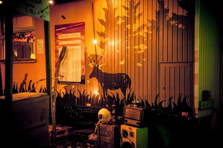 Roots in the Woods 2014 | Caroline van der Waal Fotografie