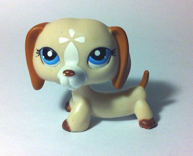 Lps dachshund. 9 best Lps dachshund images on Pinterest   Lps dachshund