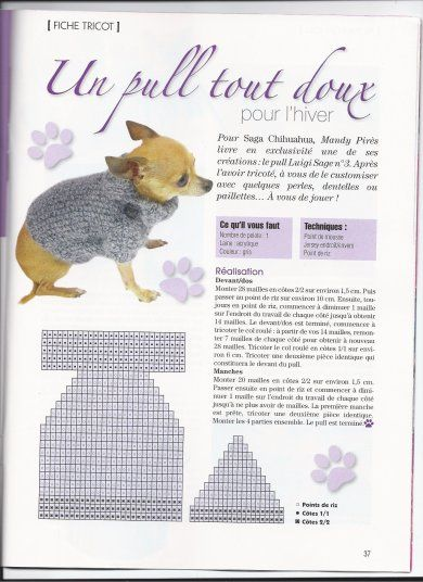 modele tricot pull chien