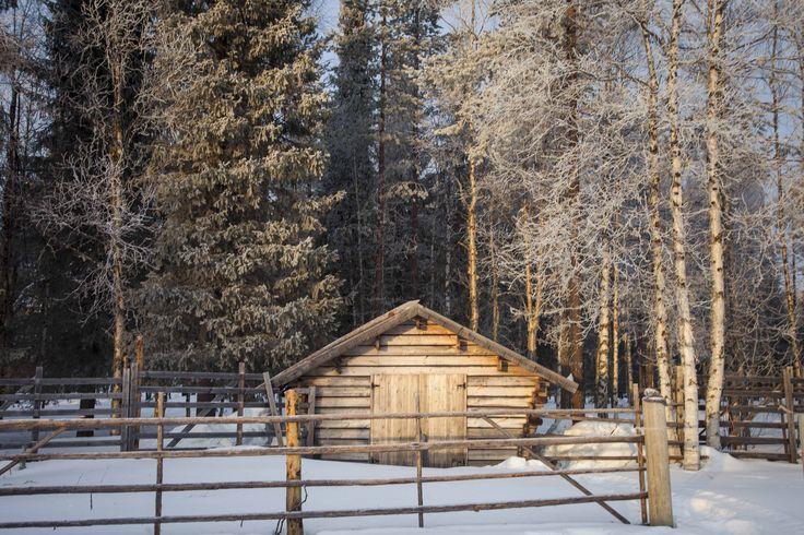 #Winter und #Schnee im finnischen #Lappland! Wunderschöne Landschaften, atemberaubende Natur und voller Erlebnisse! In the Spirit of #Kalevala! #Kalevalaspirit #Finnland #Naturbild