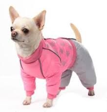 Resultado de imagem para Одежда для собак