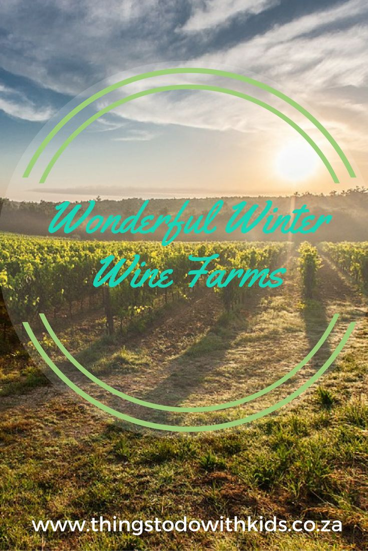 Child friendly wine farms offering indoor and outdoor play areas for kids! Wine farms ideal for family excursions and activities.