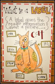 anchor chart for labels