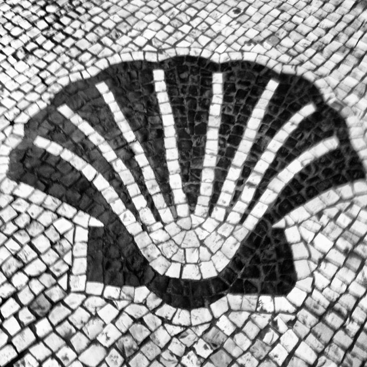 Calçada à portuguesa, Macau.  Motivo: concha Picture by Nuno Leal
