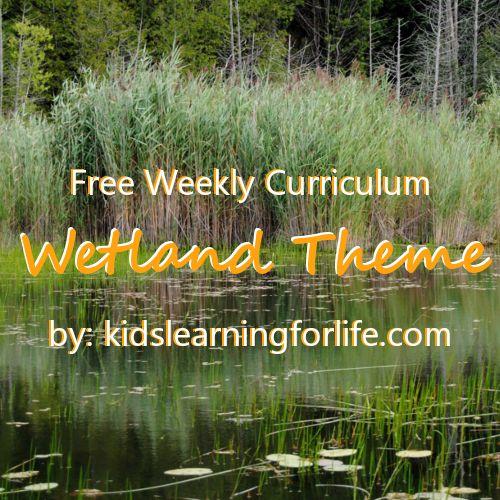 Wetland Theme | Curriculum | Toddler | Preschool | Swamp | Alligator | Crocodile | Habitat | Biome | STEAM |