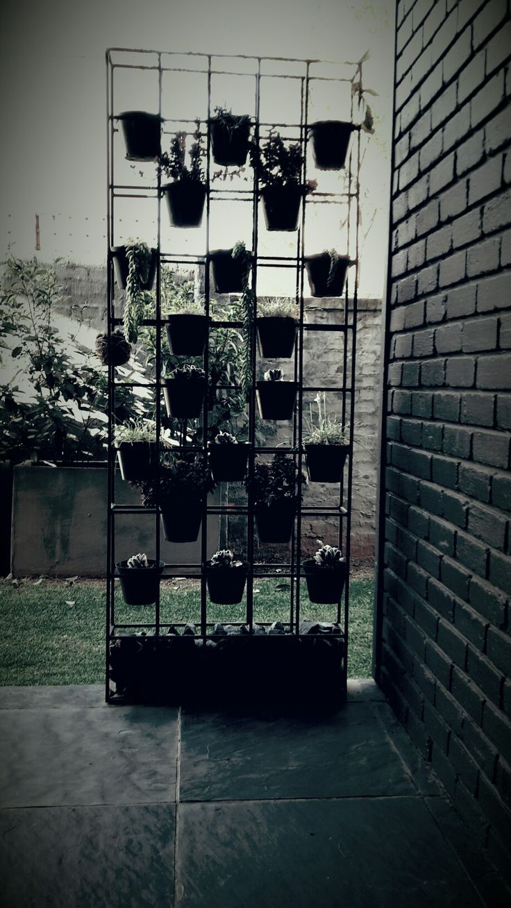 My planter