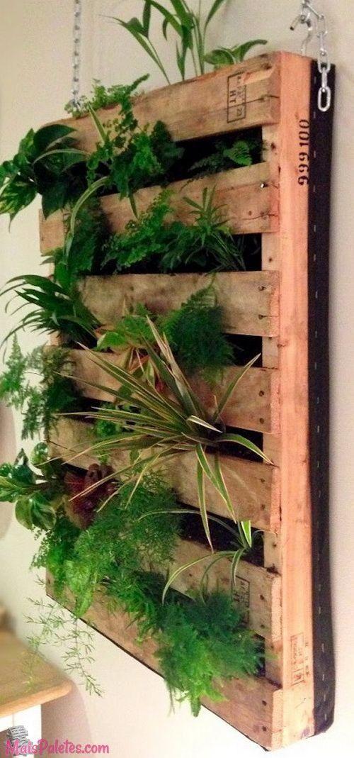 jardim vertical urbano:Jardim Vertical reutilizando palete de madeira #pallets #