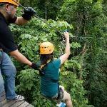 Flight of the Gibbon - Pattaya - Reviews of Flight of the Gibbon - TripAdvisor