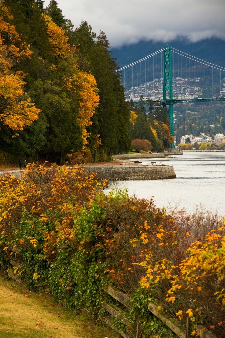 Fall - Stanley Park, Lions Gate Bridge, Vancouver, BC