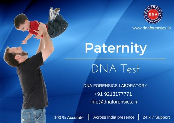 Paternity DNA Test