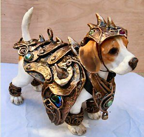 Google Image Result for http://www.biology-blog.com/images/blogs/10-2007/organic-armor-for-dogs.jpg