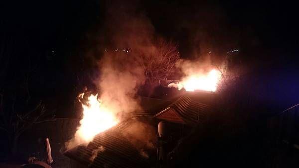 Wien: Brand im Kleingartenverein – Feuerwehr mit vier Löschleitungen im Einsatz