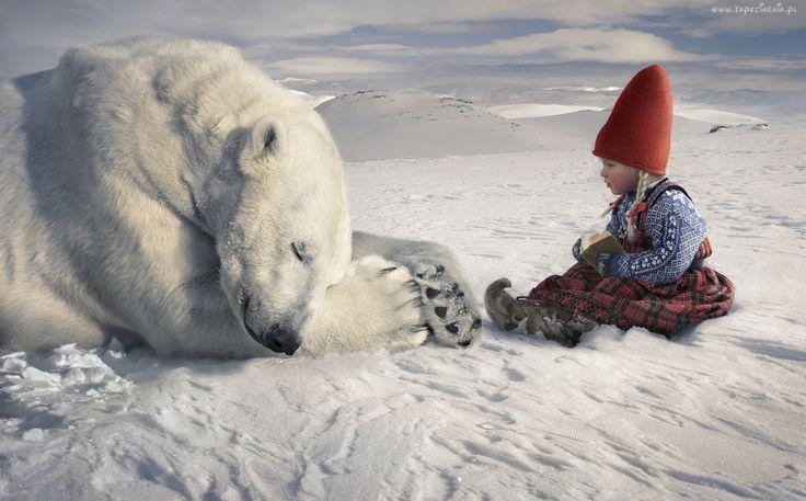 Miś, Polarny, Dziecko, Zima