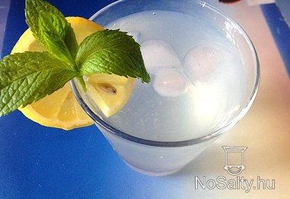 Mentás limonádé http://www.nosalty.hu/recept/mentas-limonade