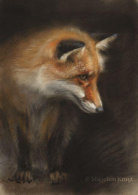 FOX pastel painting by Marjolein Kruijt #wildlifeart