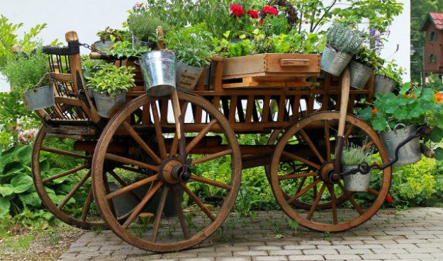 Unusual Garden Ornaments - old cart displayed with pot plants