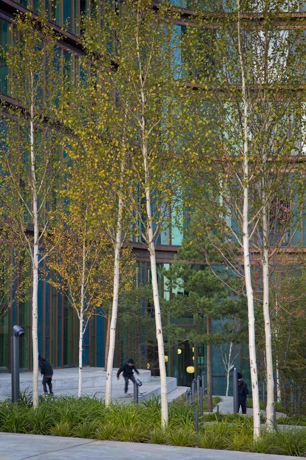 SUDS urban water | Garden Design And Landscape Architecture Blog – Gardenvisit.com
