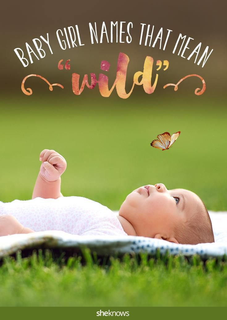 If you're looking for a baby name that means wild, you're at the right place! So many cool names for a little girl!
