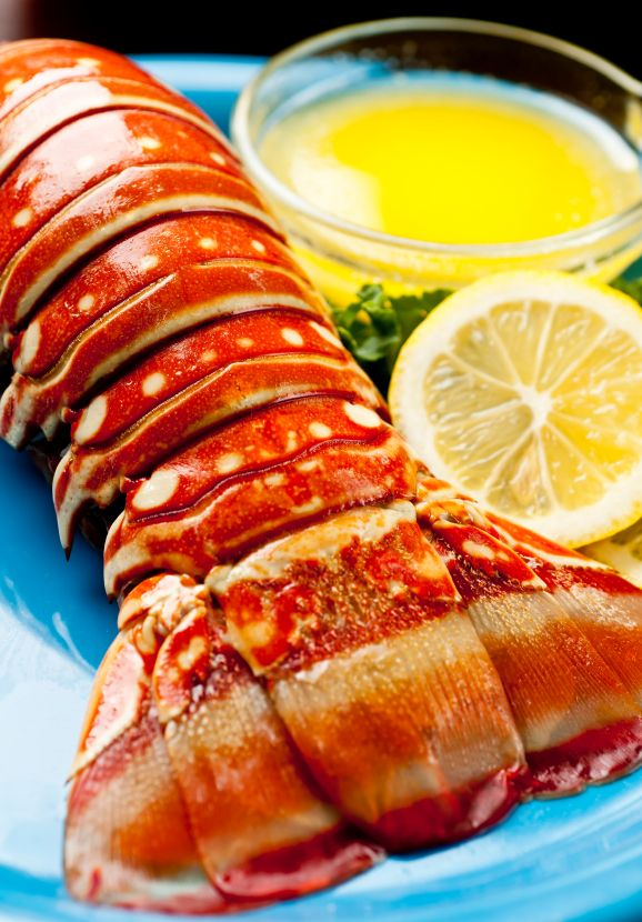 videos on how to cook lobster tails