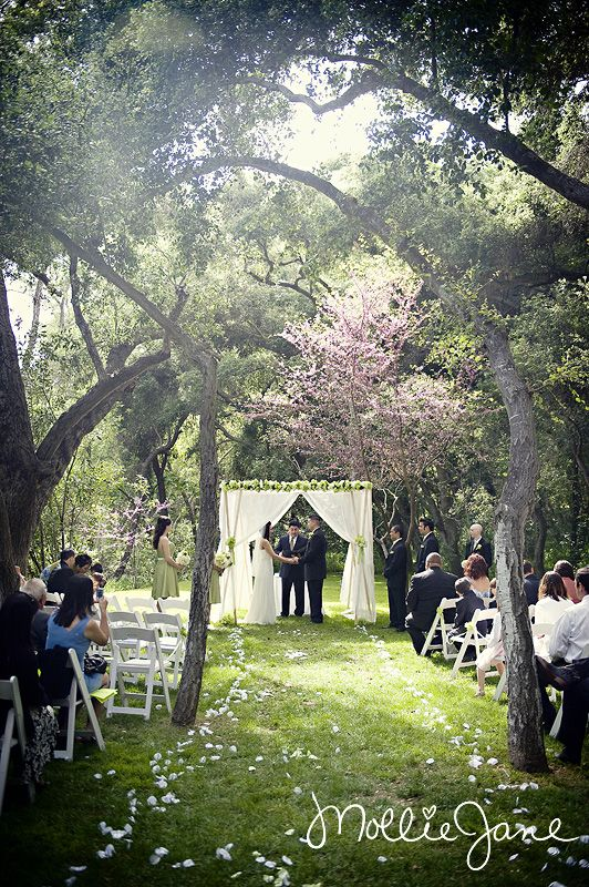 43 Best Wedding Venue Images On Pinterest