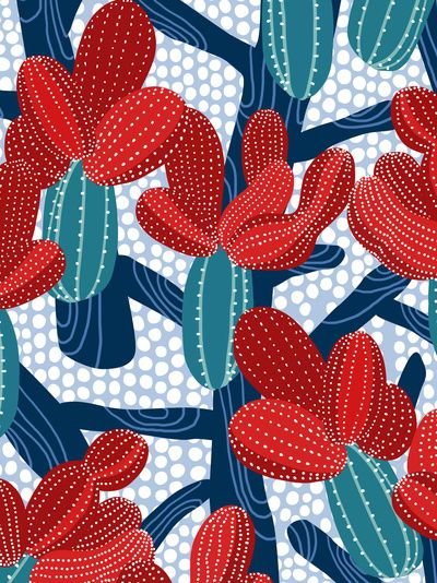Winter Cactus - by frameless