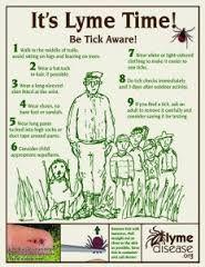 Image result for tick fever