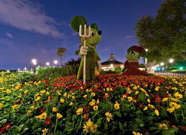 17 Best Images About Epcot International Flower Garden Festival On Pinterest Gardens Disney
