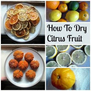 How to Dry Citrus Fruit - Tea and a Sewing Machine