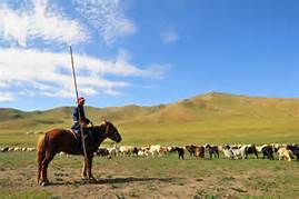 La Mongolie - Yahoo Image Search Results